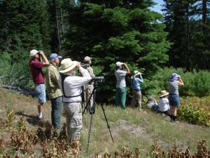 Field Trip, July 2014