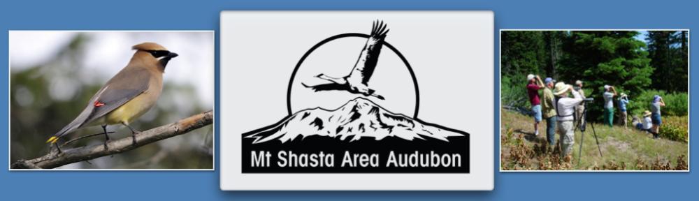 Mount Shasta Area Audubon